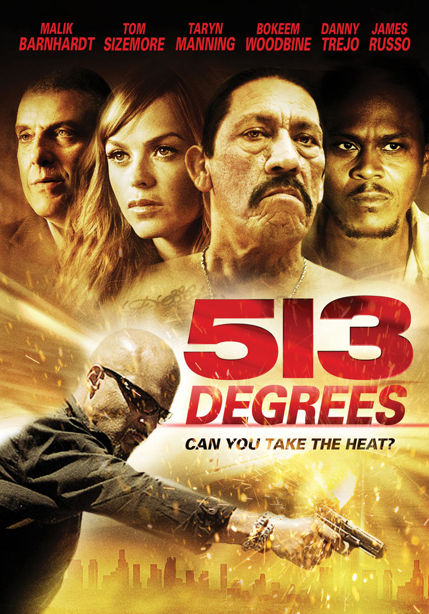 513 Degrees Poster #1