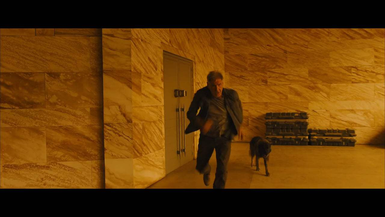 Blade Runner 2049 Vignette - Denis Villeneuve (2017) Screen Capture #3