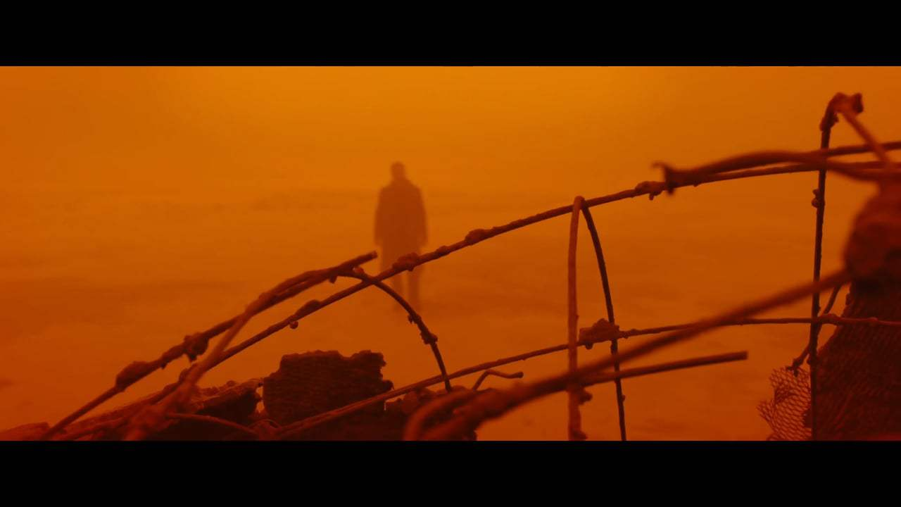 Blade Runner 2049 Vignette - Harrison Ford (2017) Screen Capture #1