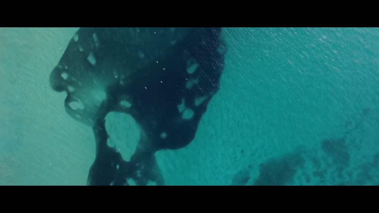 Blue Trailer (2017) Screen Capture #1