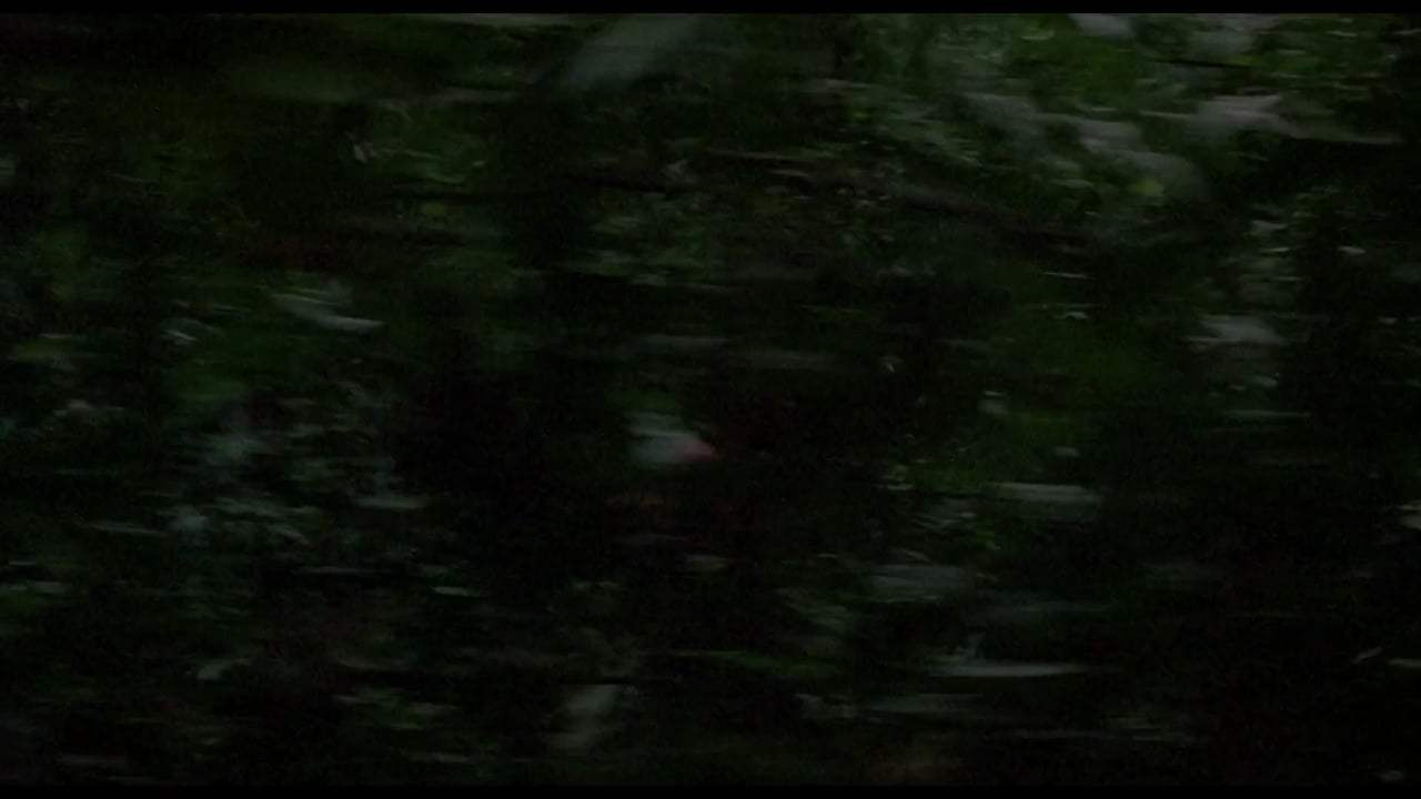 Predator 30th Anniversary Trailer (1987) Screen Capture #1