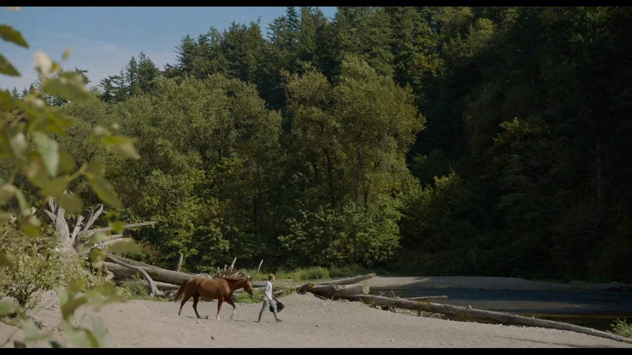 Lean on Pete Trailer (2018) Screen Capture #3