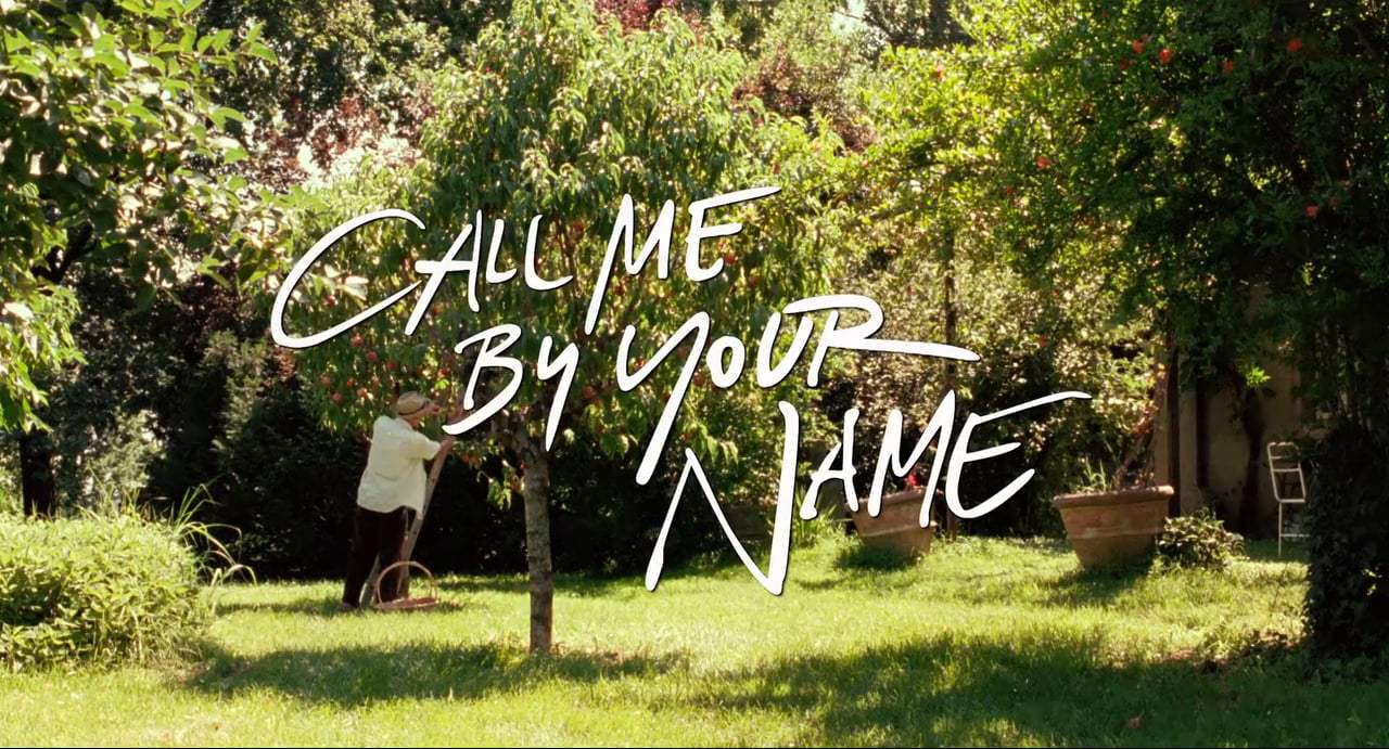 Call Me by Your Name TV Spot - Spellbinding (2017) Screen Capture #4