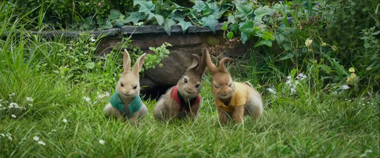 Peter Rabbit TV Spot - Versus (2018) Screen Capture #4