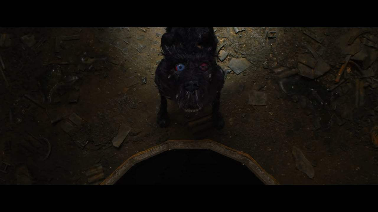 Isle of Dogs (2018) - You're Nutmeg Screen Capture #2