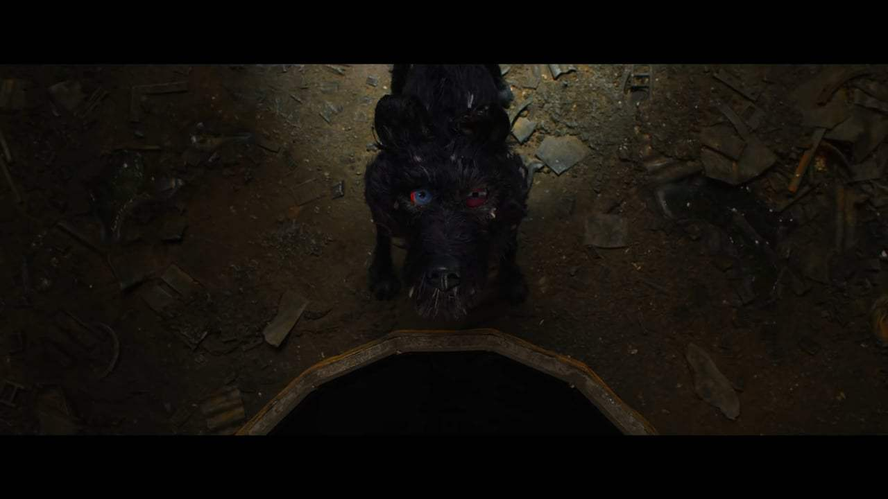 Isle of Dogs (2018) - You're Nutmeg Screen Capture #3