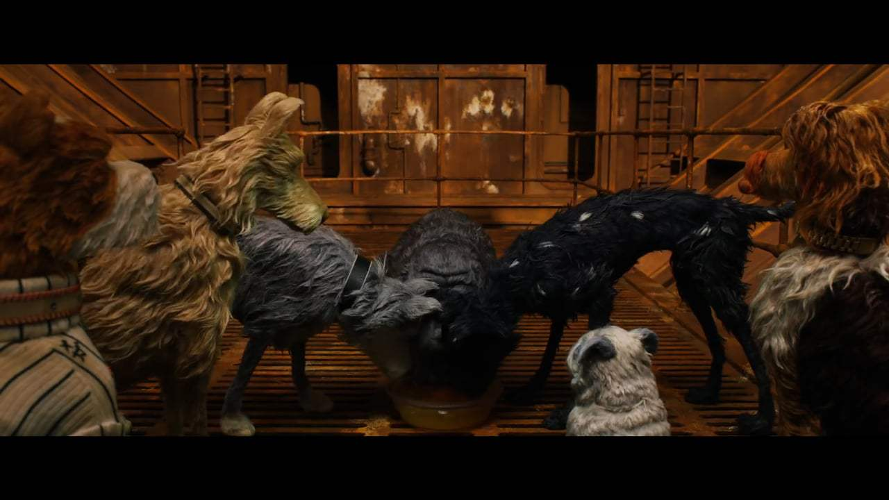Isle of Dogs (2018) - Dog Zero Screen Capture #1
