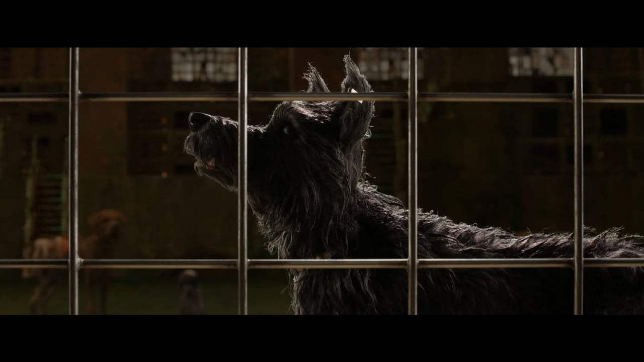 Isle of Dogs TV Spot - I Love Dogs (2018) Screen Capture #3
