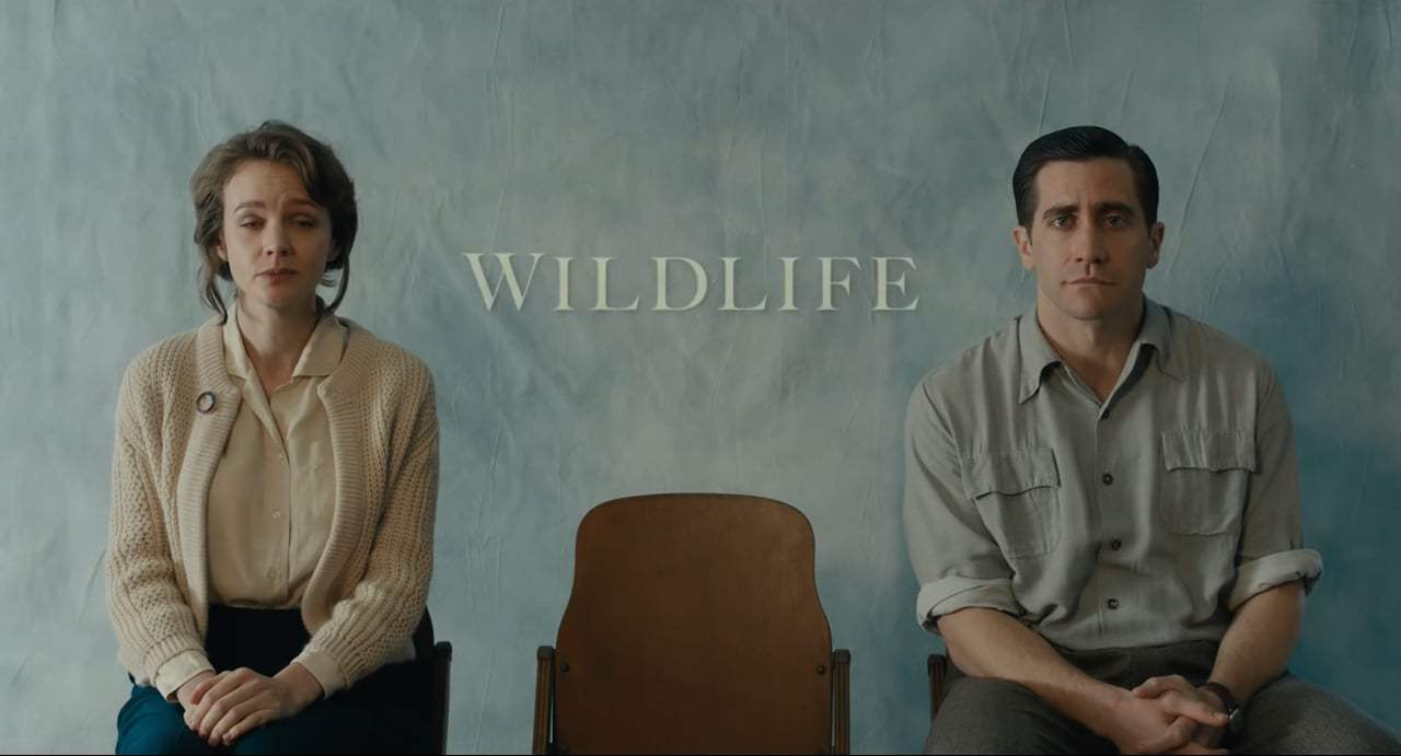 Wildlife Trailer (2018) Screen Capture #4