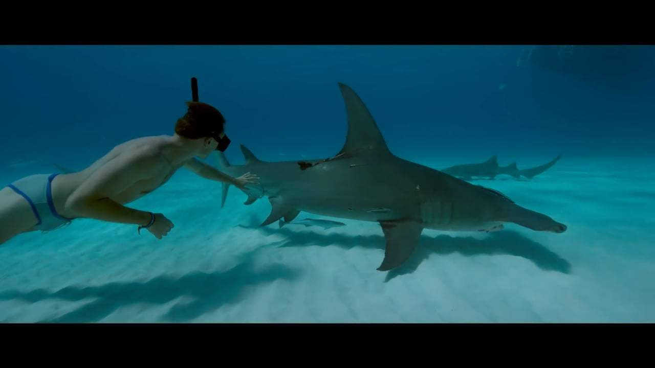 Sharkwater Extinction Trailer (2018) Screen Capture #4