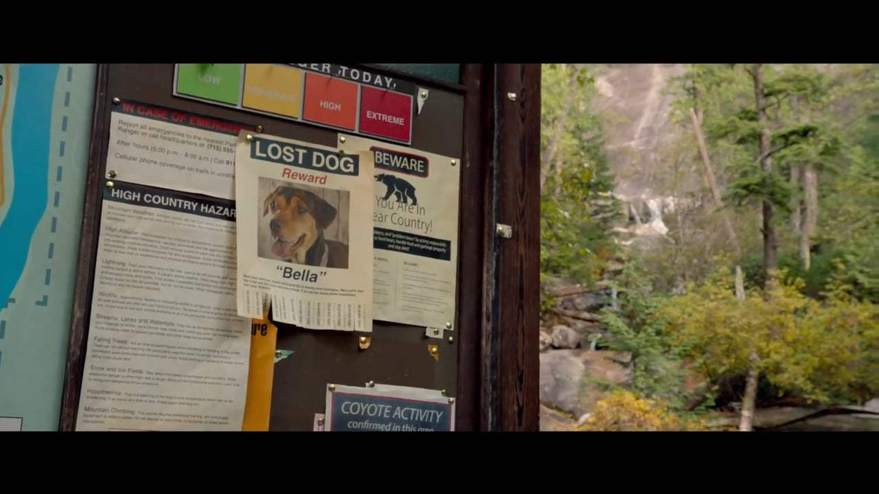 A Dog's Way Home International Trailer (2019) Screen Capture #2