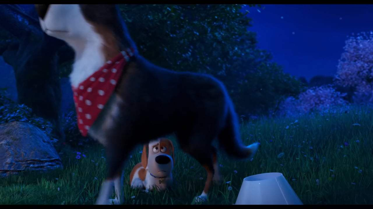 The Secret Life of Pets 2 Final Trailer (2019) Screen Capture #2