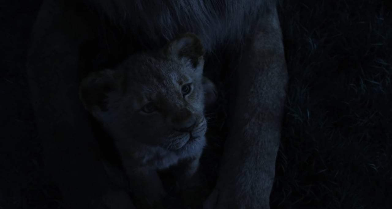 The Lion King TV Spot - Can You Feel the Love Tonight (2019) Screen Capture #2