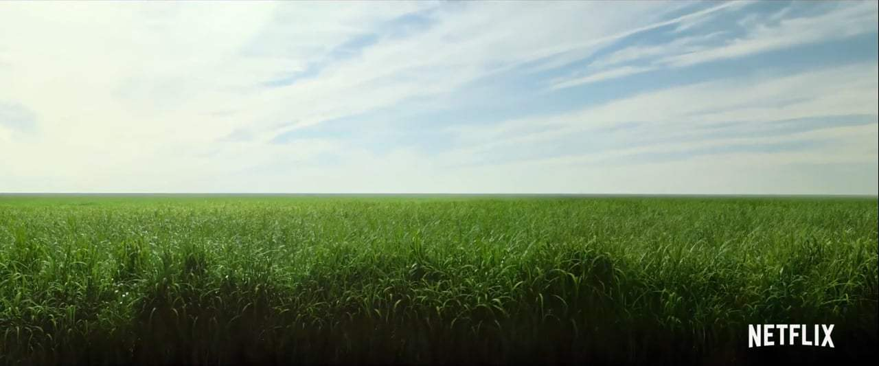 In the Tall Grass Trailer (2019) Screen Capture #1