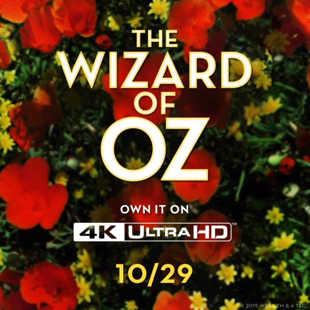 The Wizard Of Oz TV Spot - 4K Announcement (1939) Screen Capture #4