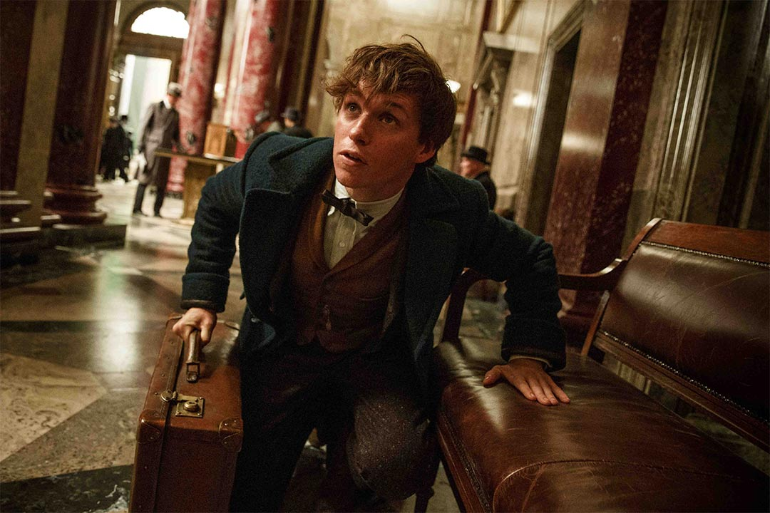 Fantastic Beasts and Where to Find Them Trailer Screencap