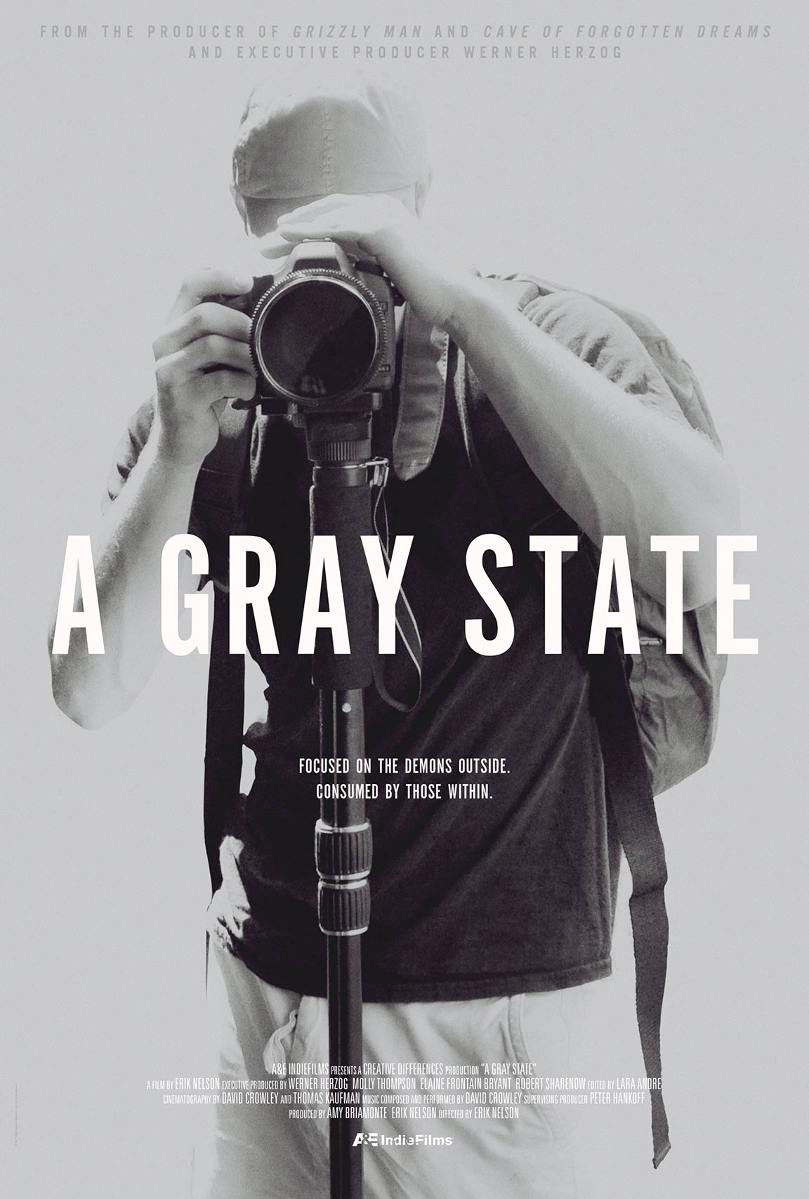 A Gray State Poster #1