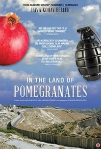 In the Land of Pomegranates Poster #1