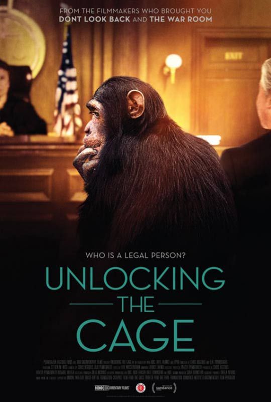 Unlocking the Cage Poster #1