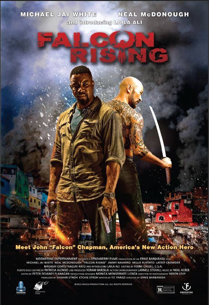 Falcon Rising Poster #1