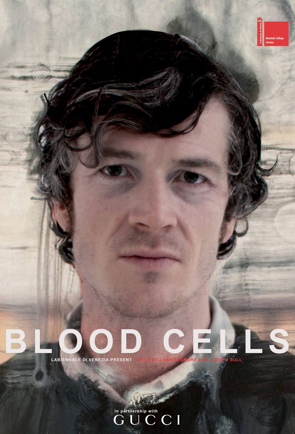 Blood Cells Poster #1