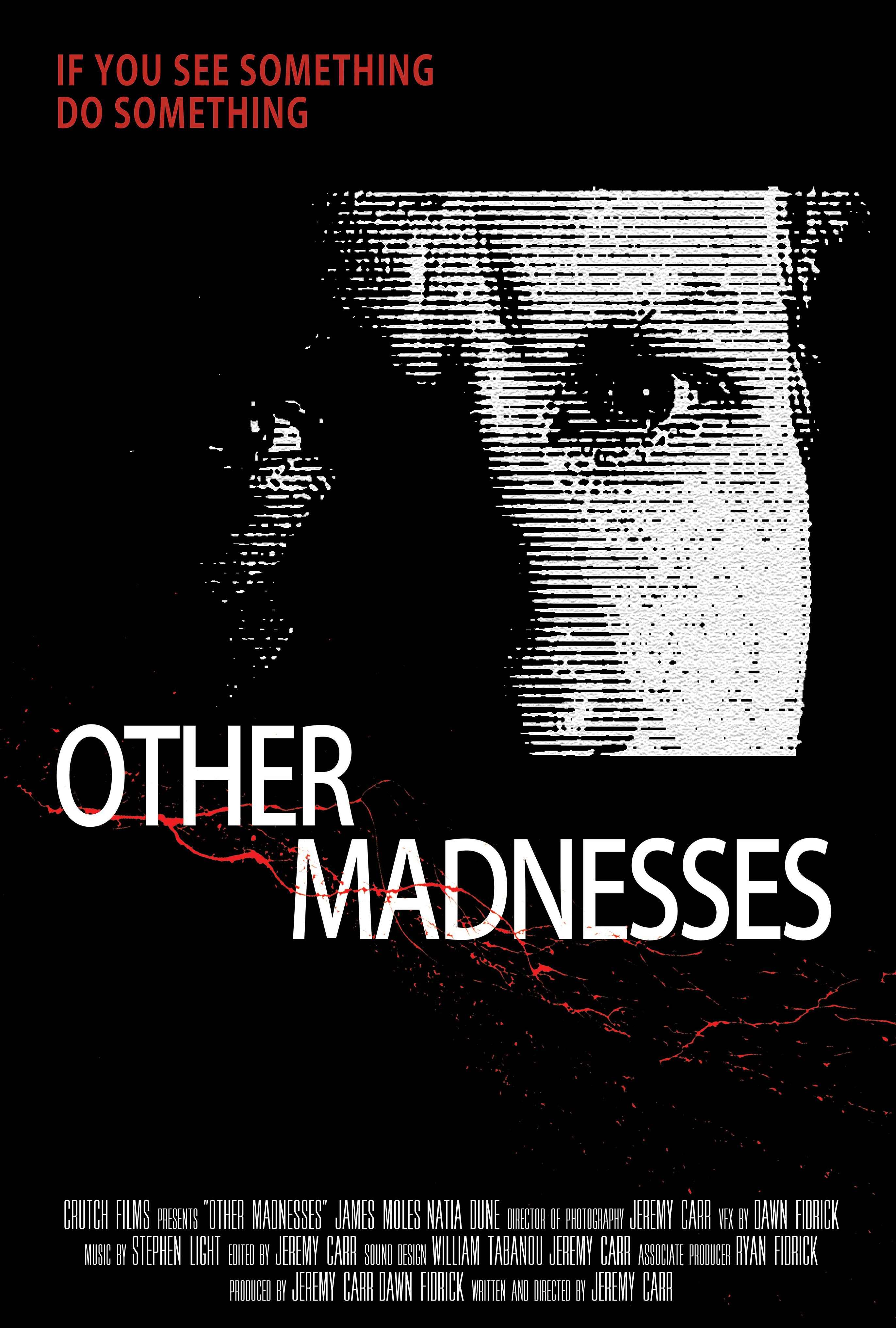 Other Madnesses Poster #1