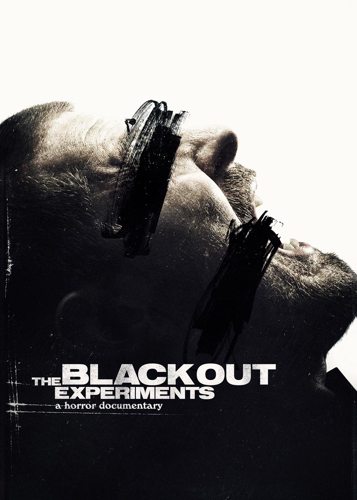 The Blackout Experiments Poster #1