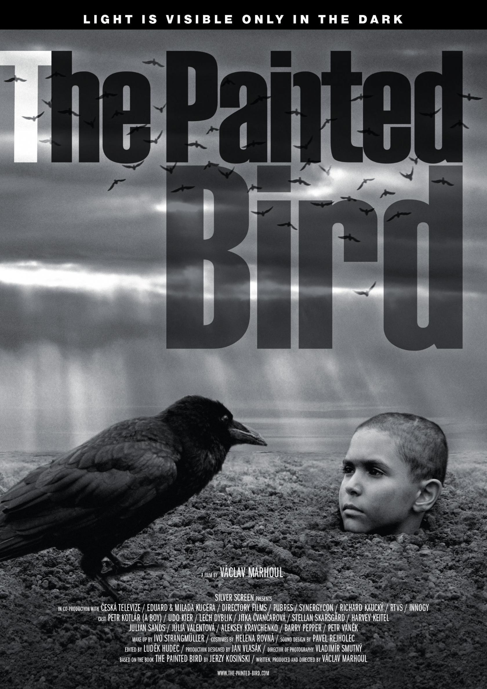 The Painted Bird Poster #1