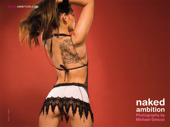 Naked Ambition, An R-Rated Look At An X-Rated Industry Poster #3