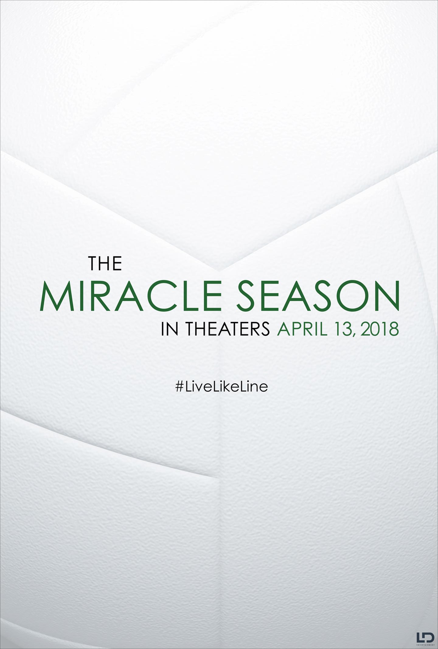 The Miracle Season Poster #1