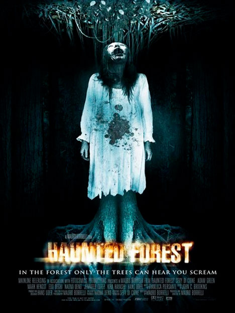 Haunted Forest Poster #1