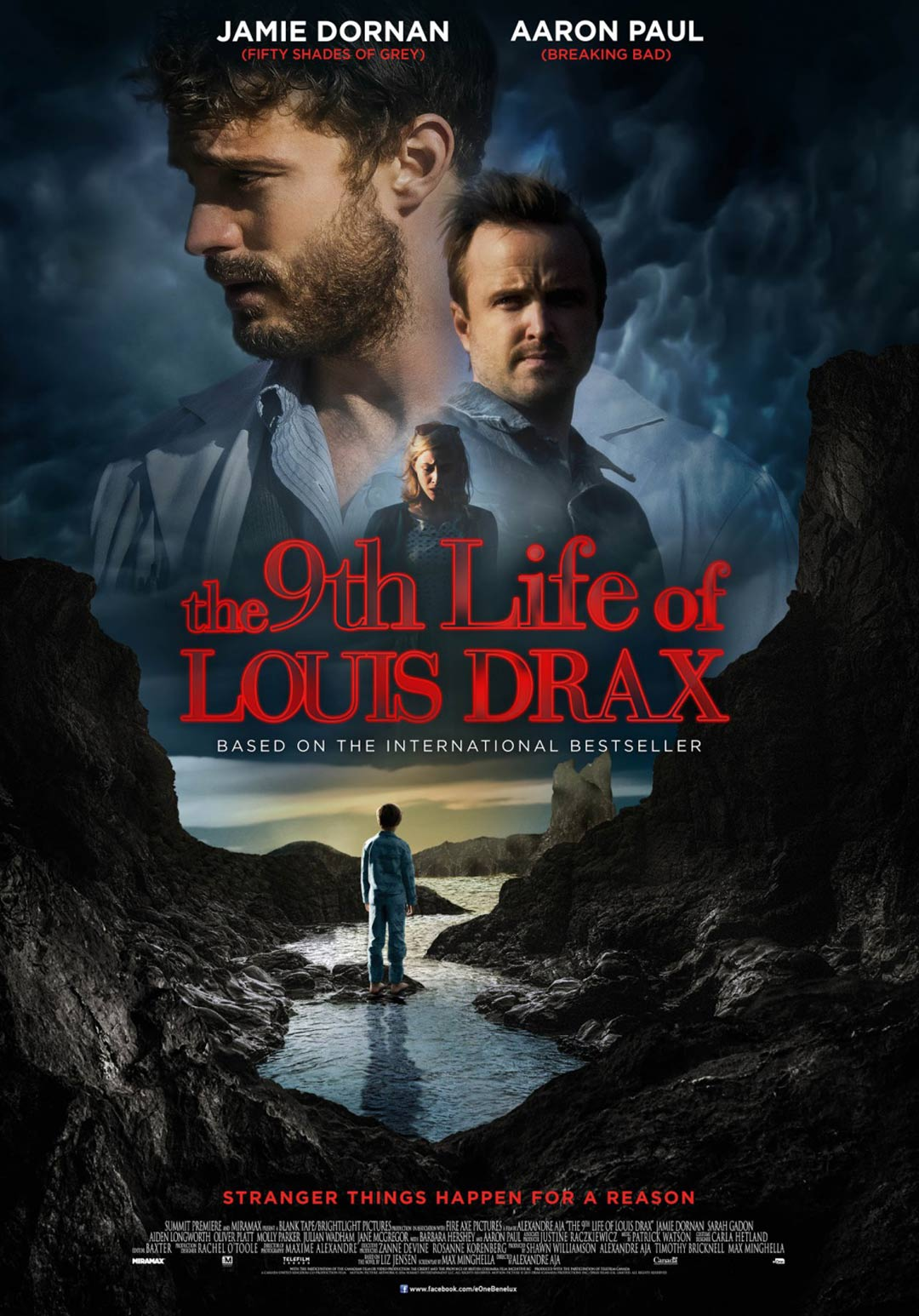 The 9th Life of Louis Drax Poster #4