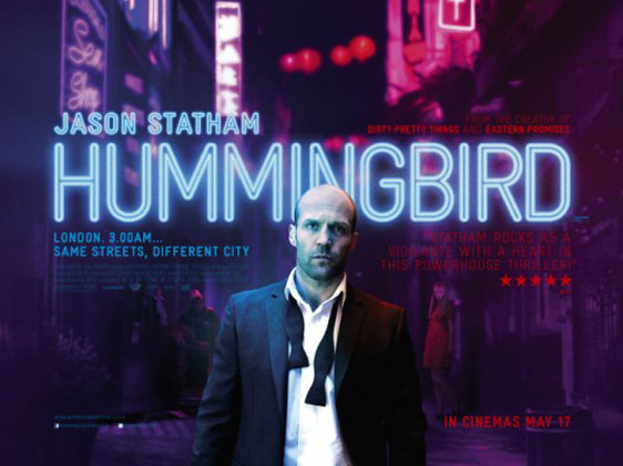Hummingbird Poster #6