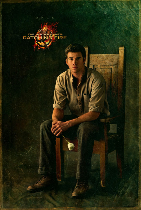 The Hunger Games: Catching Fire Poster #12