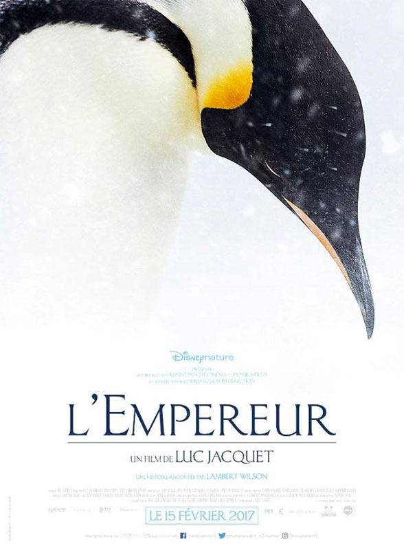 March of the Penguins 2: The Next Step Poster #1