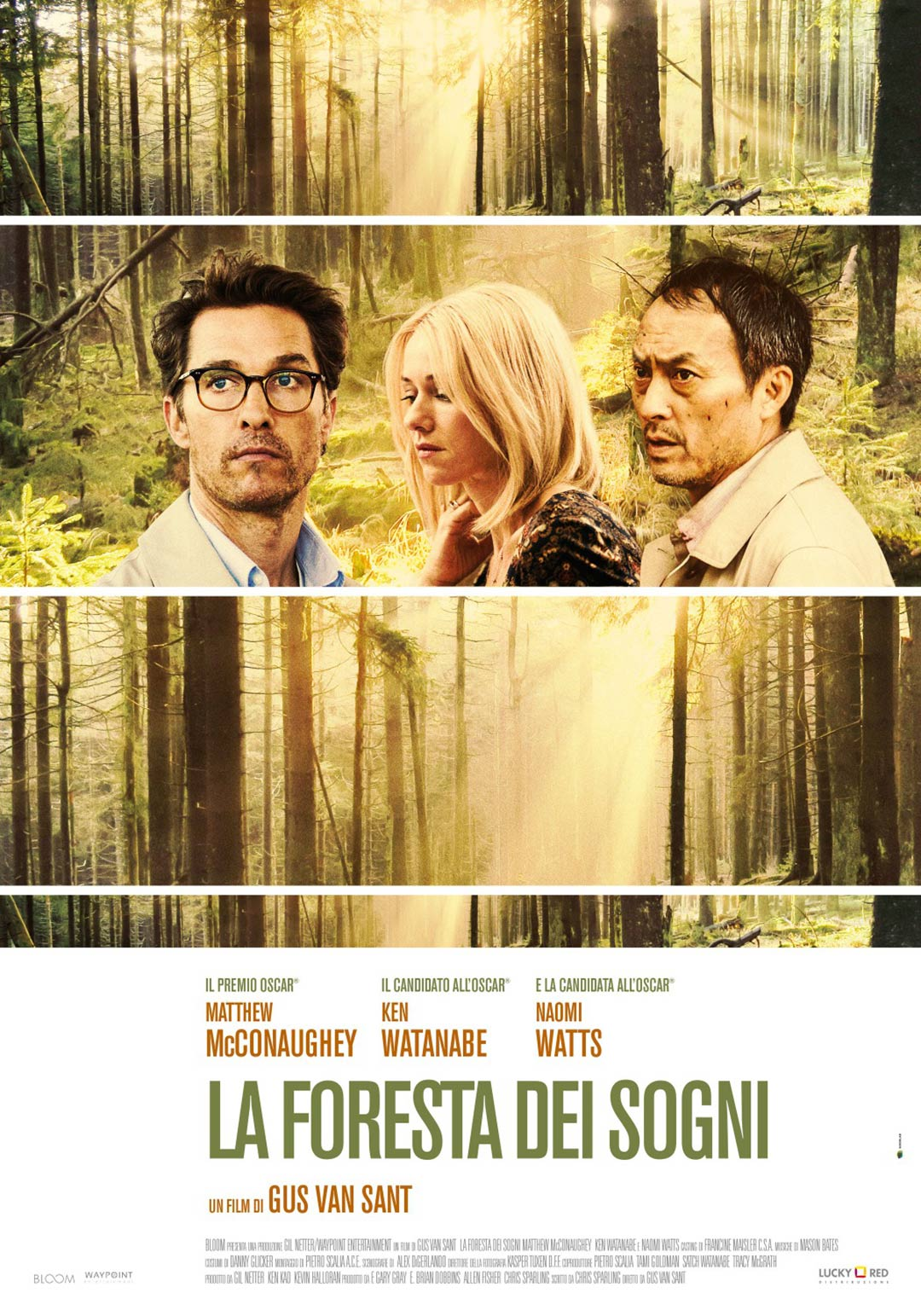 The Sea of Trees Poster #4