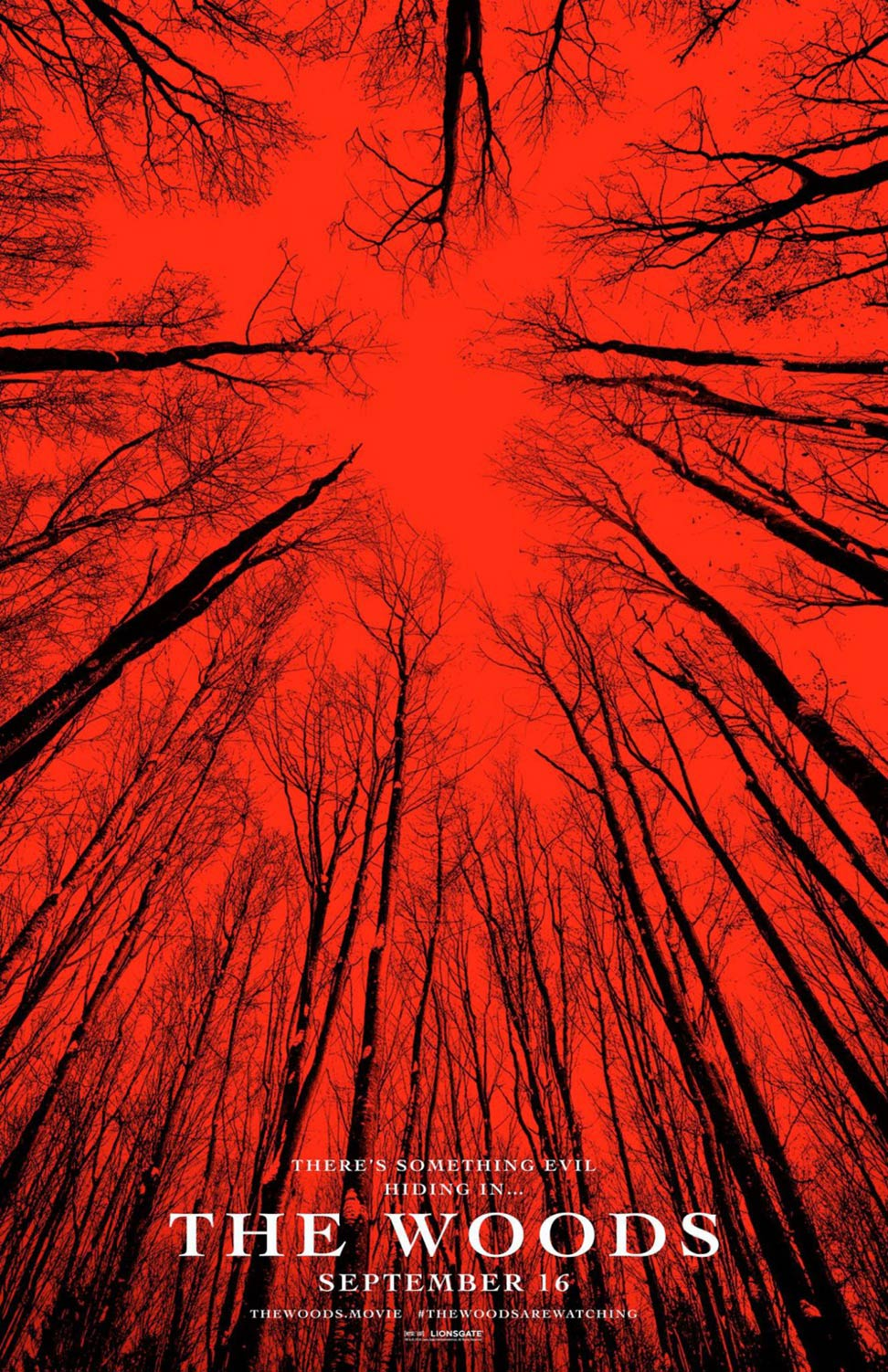 Blair Witch Poster #2