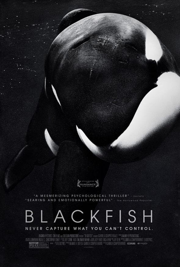 Blackfish Poster #1