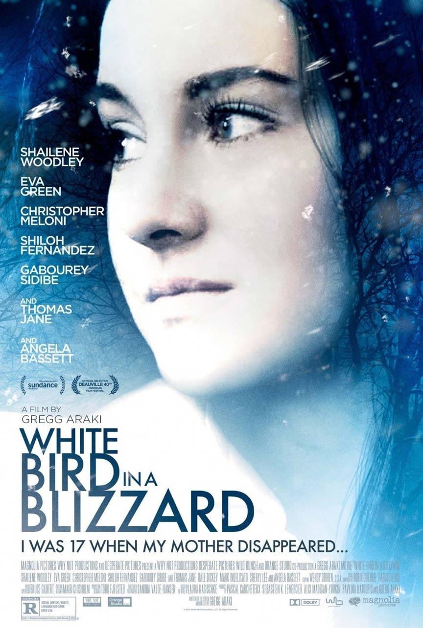 White Bird in a Blizzard Poster #1