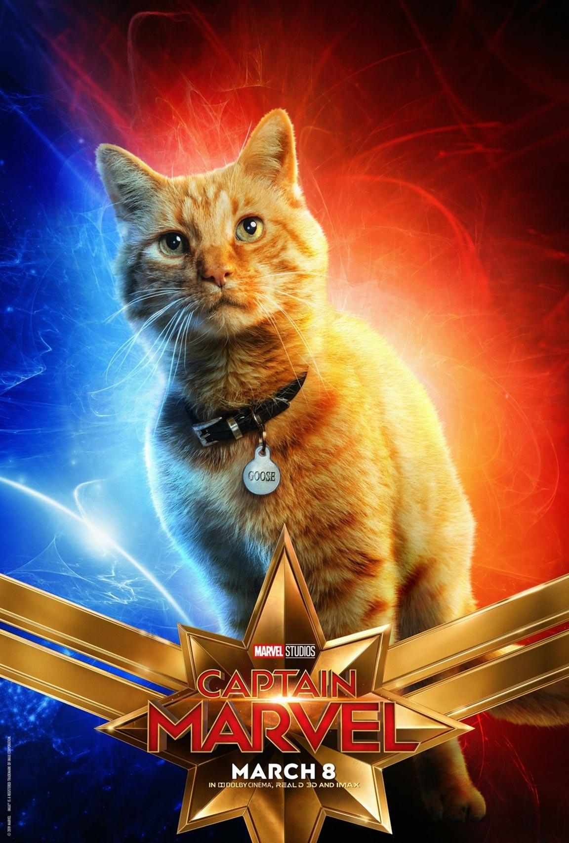 Captain Marvel Poster #16