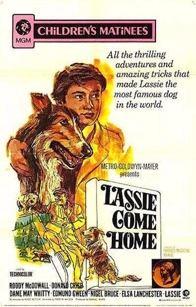Lassie Come Home Poster #2