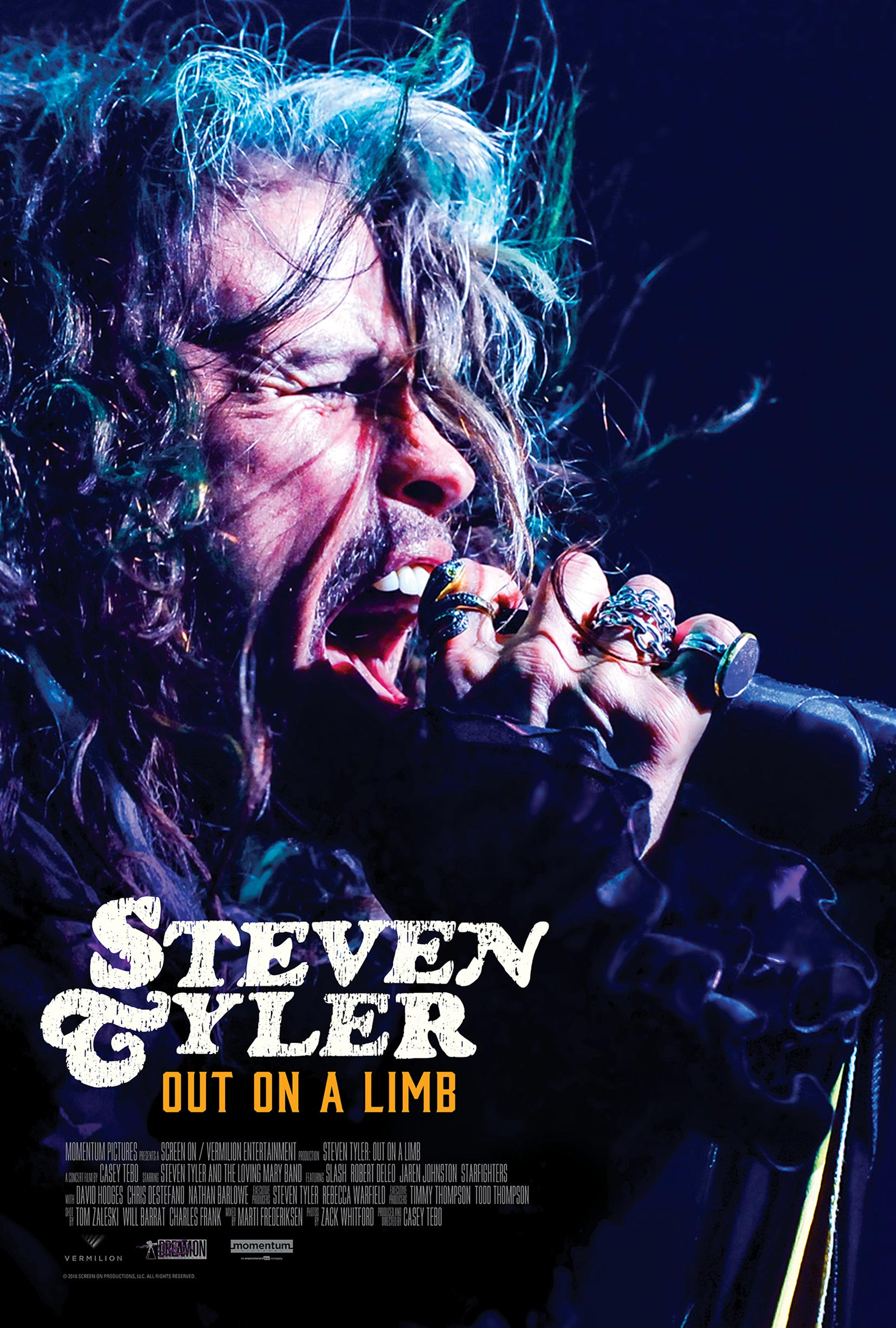 Steven Tyler: Out on a Limb Poster #1