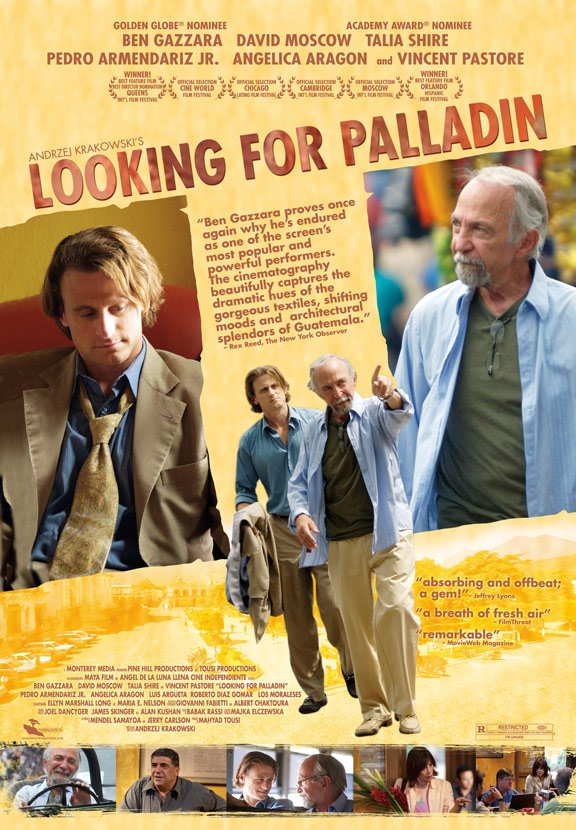 Looking for Palladin Poster #1