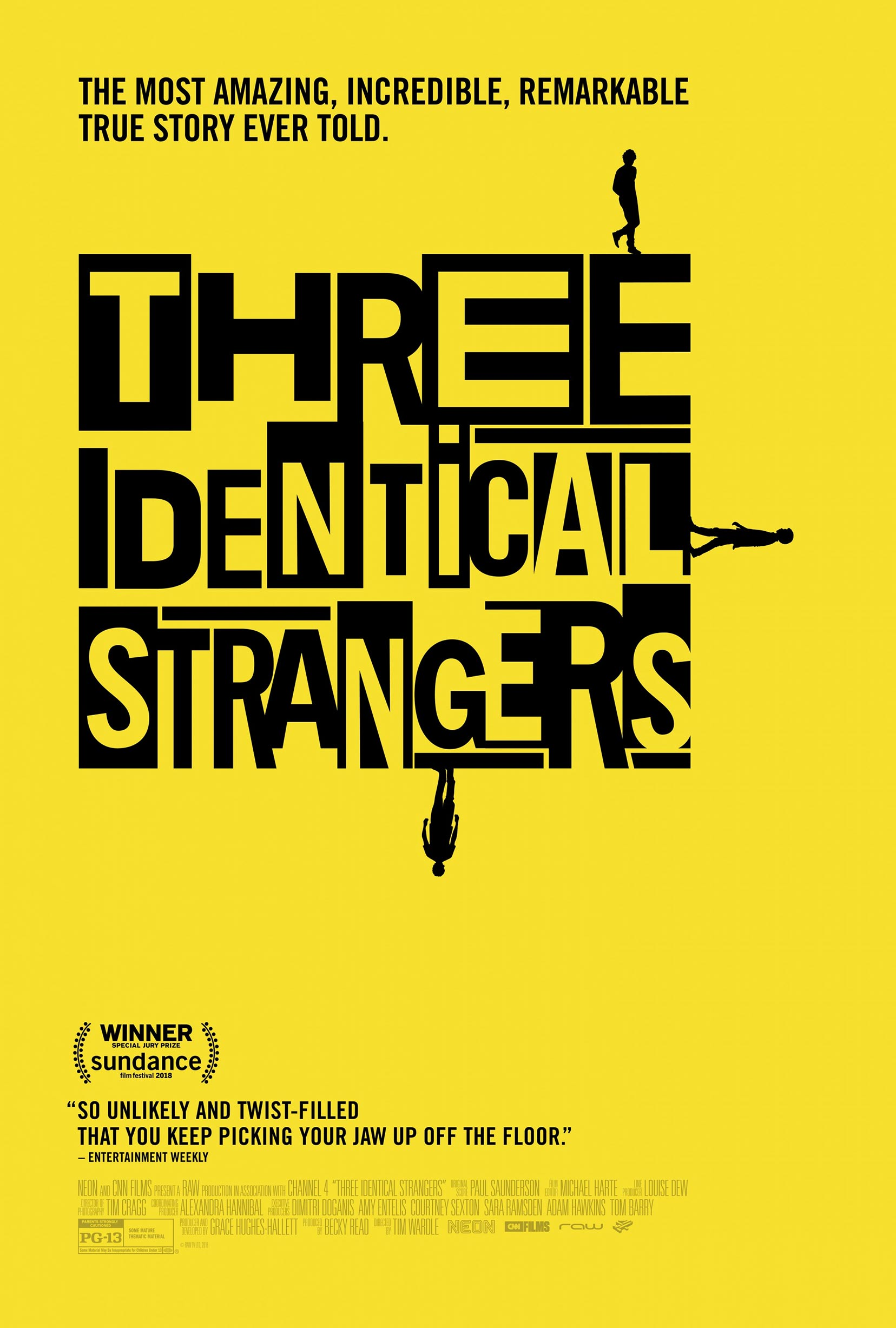 Three Identical Strangers Poster #1