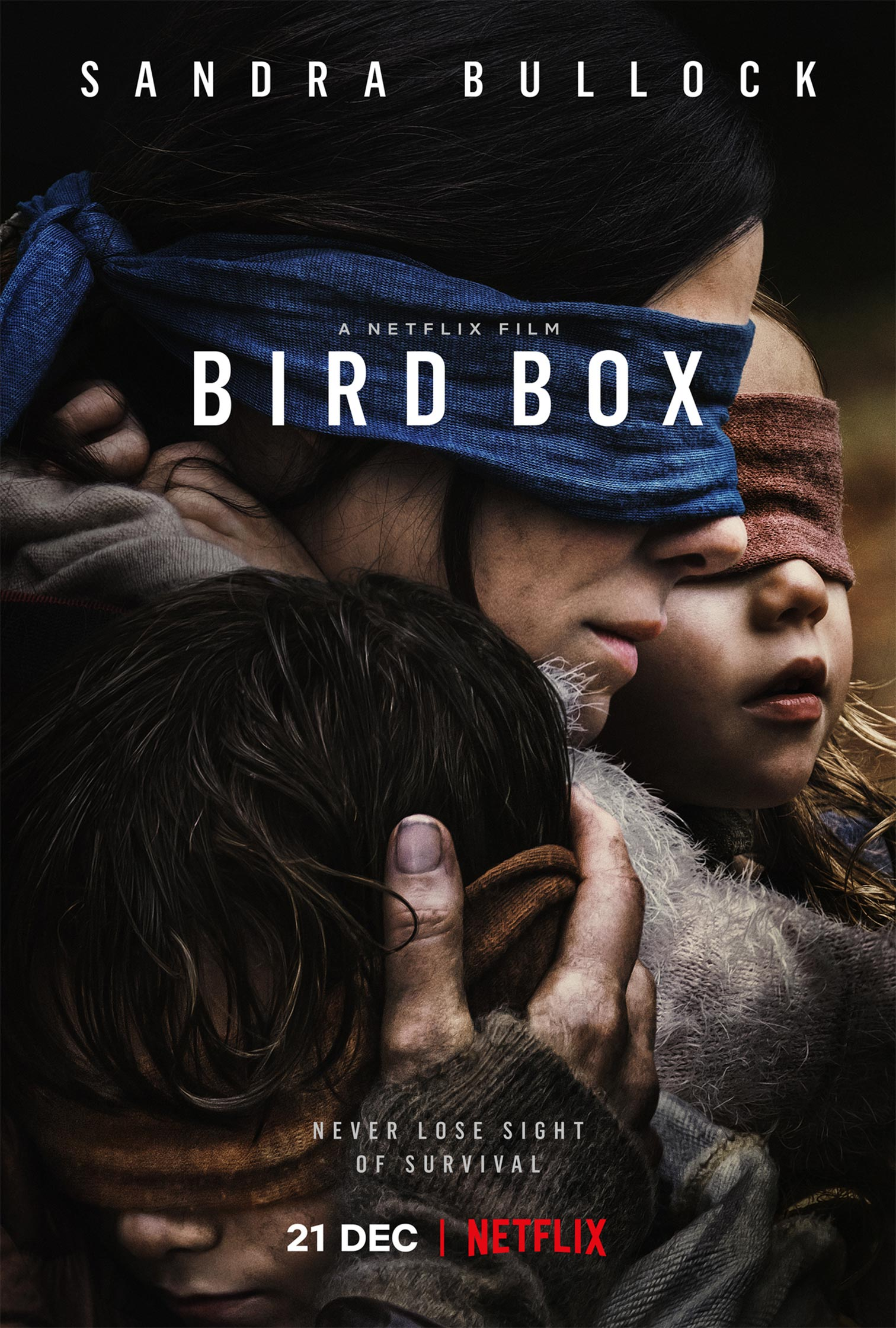 bird box  2018  poster  1
