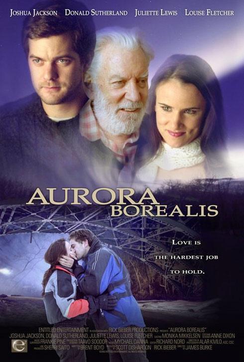 Aurora Borealis Poster #1