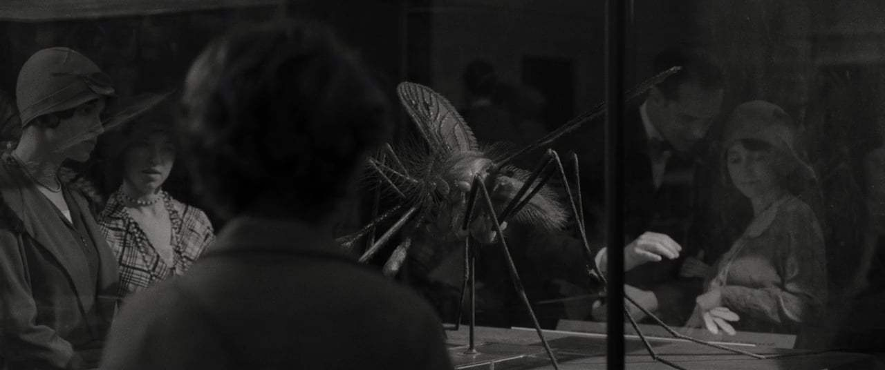 Wonderstruck (2017) - Museum Chase Screen Capture