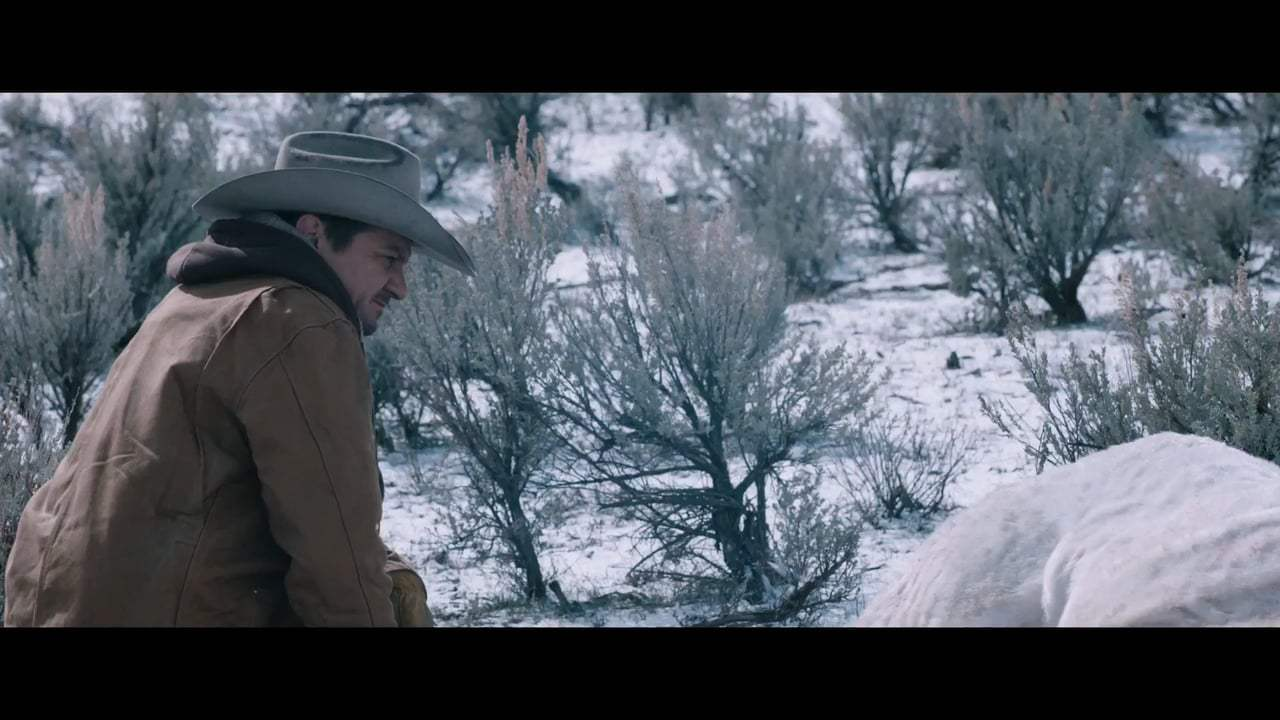 Wind River TV Spot - America (2017)