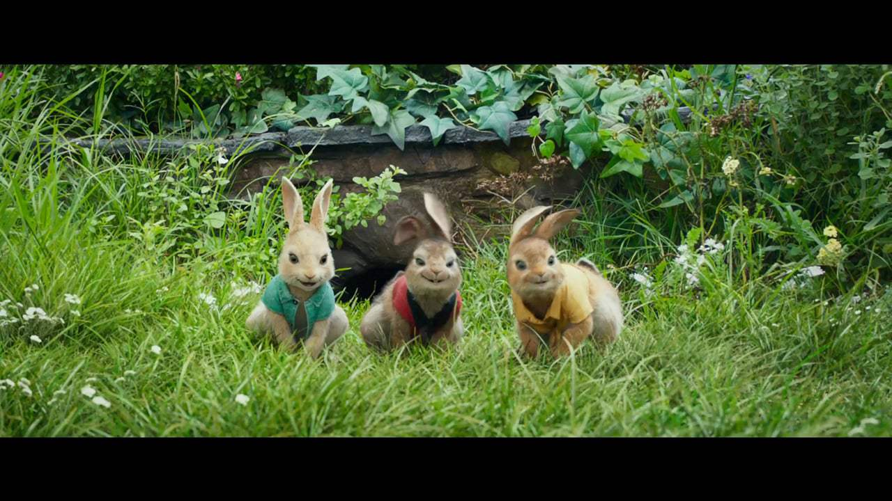 Peter Rabbit Vignette - Margot Robbie (2018)