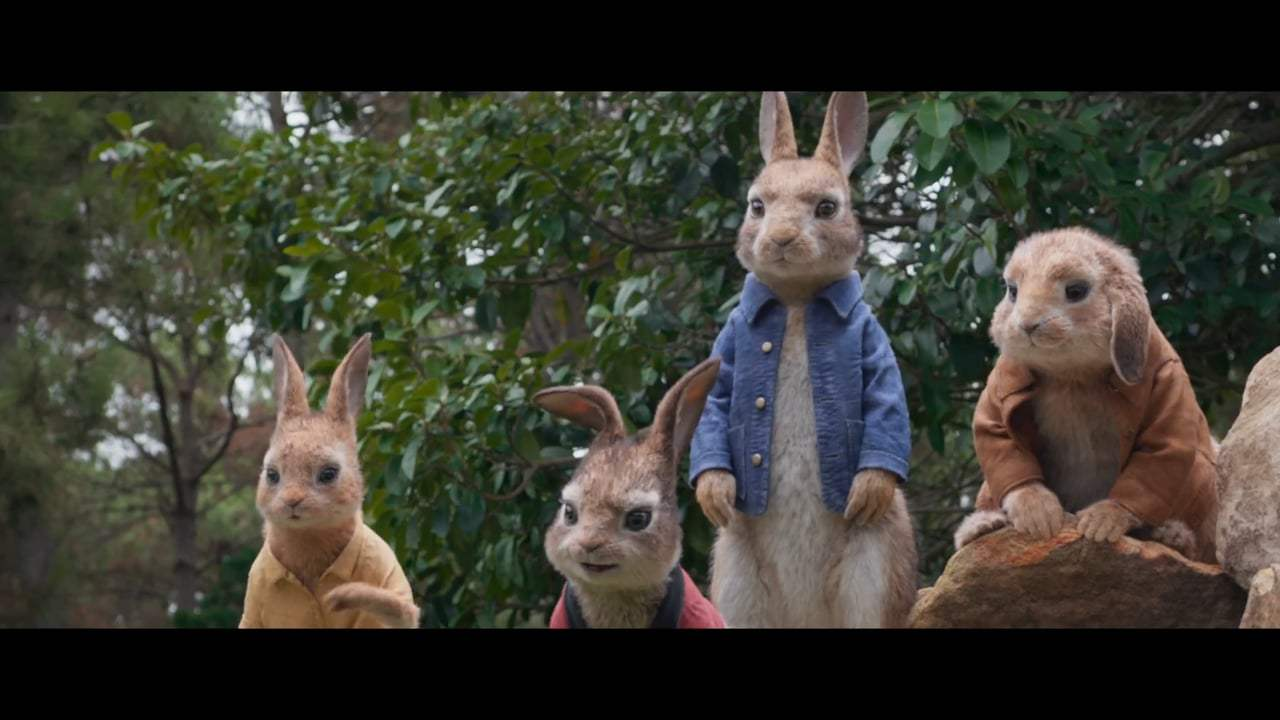 Peter Rabbit Vignette - Mopsy (2018)